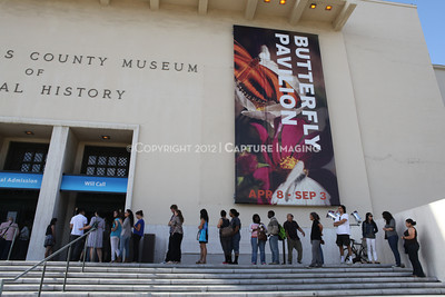 1206169-006    LOS ANGELES, CA - JUNE 2:  The NHM First Fridays Event at the Natural History Museum of Los Angeles County on June 2, 2012 in Los Angeles, California. (Photo by Ryan Miller/Capture Imaging)