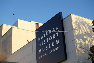1203028-0001        LOS ANGELES, CA - MARCH 2: The NHM First Fridays event held at the Natural History Museum on March 2, 2012 in Los Angeles, California. (Photo by Ryan Miller/Capture Imaging)
