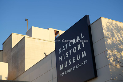 1203028-0002        LOS ANGELES, CA - MARCH 2: The NHM First Fridays event held at the Natural History Museum on March 2, 2012 in Los Angeles, California. (Photo by Ryan Miller/Capture Imaging)
