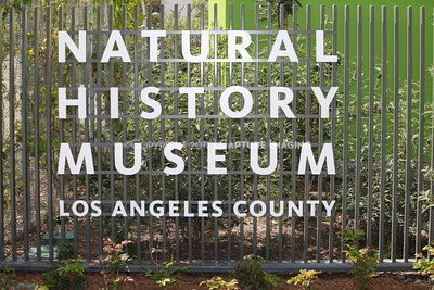 1204064-001    LOS ANGELES, CA - APRIL 19: The north campus press preview at Natural History Museum of Los Angeles County on April 4/19/12, 2012 in Los Angeles, California. (Photo by Ryan Miller/Capture Imaging)