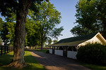 Nuckols Farm Scenic :