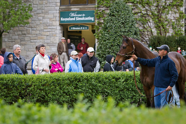 "Ball Four is paraded in the paddock at Keeneland in honor of his retirement to Old Friends.  Baseball plaer Jim Bouton, author of the book ""Ball Four"" was there to sign books."
