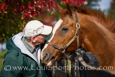 Michael & Marquetry at Old Friends 10.15.12
