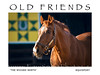 The Wicked North : 'The Boys' at Old Friends, Georgetown, Ky. A home for retired thoroughbreds.