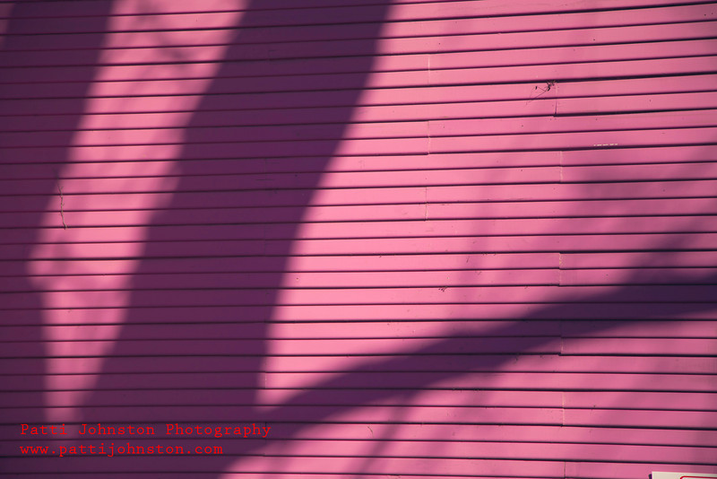 IMG_651620120128A