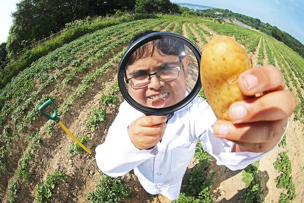 13/6/18 Jersey Premier Inn Potatoes - HIGH