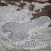 pompei130