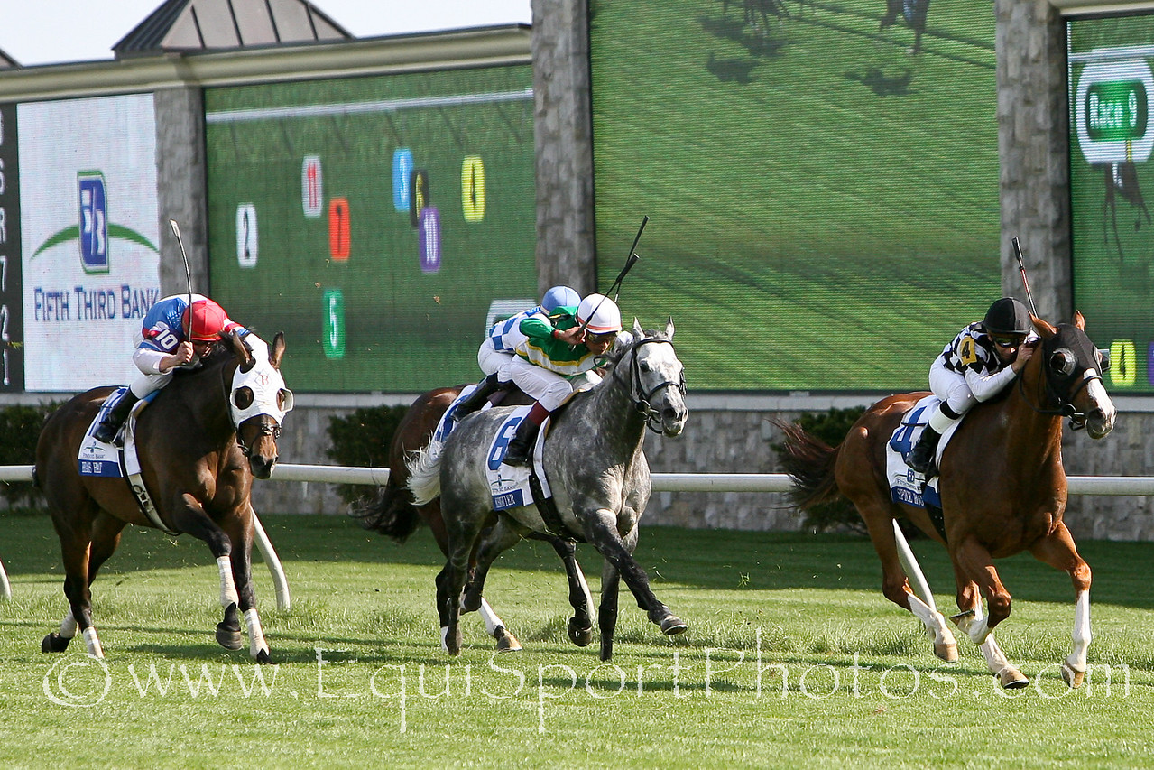 Brass Hat (outside horse) finishes 3rd to Spice Route in the Gr. II Elkhorn Stakes at Keeneland on 04.24.09.