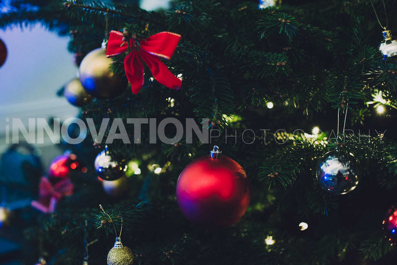 5-iNNOVATIONphotography-Parklands-Carol-Service_INN3501