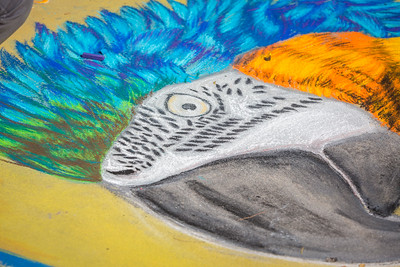 20131012 Pastels on 5th 2013-499