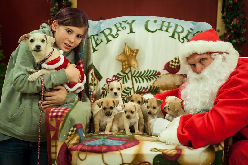 Chloe&Pups_Heather
