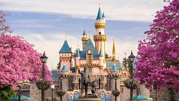 Disneyland Proposal 2017