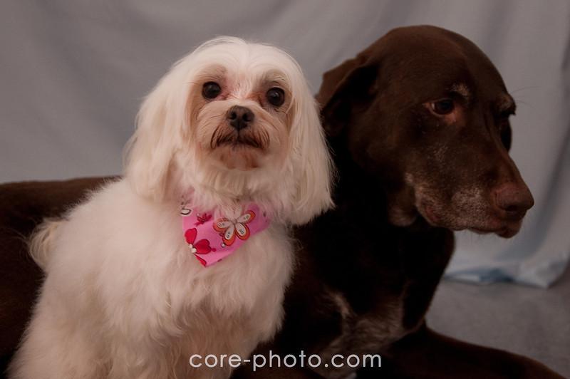 Lela & Ginger