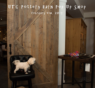 UTC_Pottery_Barn_PopUp-0207