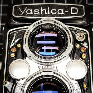 Yashica-D on the bench.