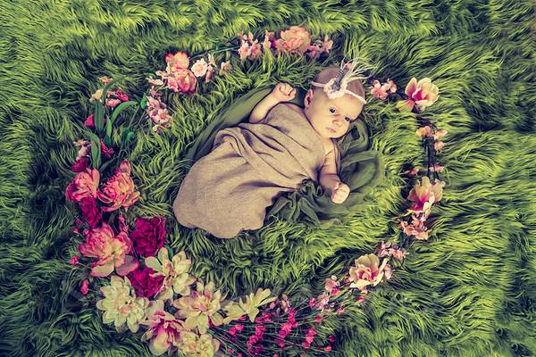 Genevieve Scogna Newborn