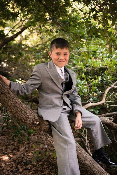 Matthew Bacon In one of USC's live oaks