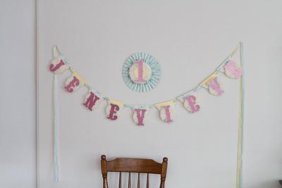 Jenevieve's 1st Birthday