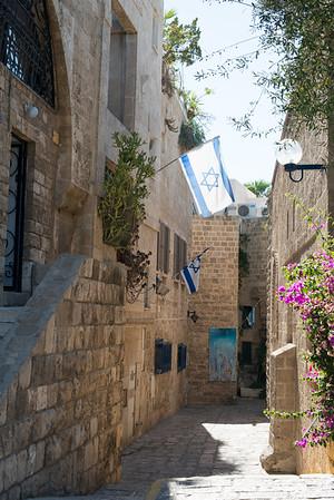 israel2014-279