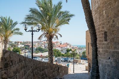 israel2014-244