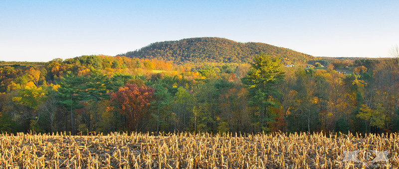 Sugarloaf Mountain in Fall