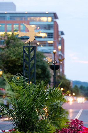 03-Weathervanes-005-Charlotte-Geary