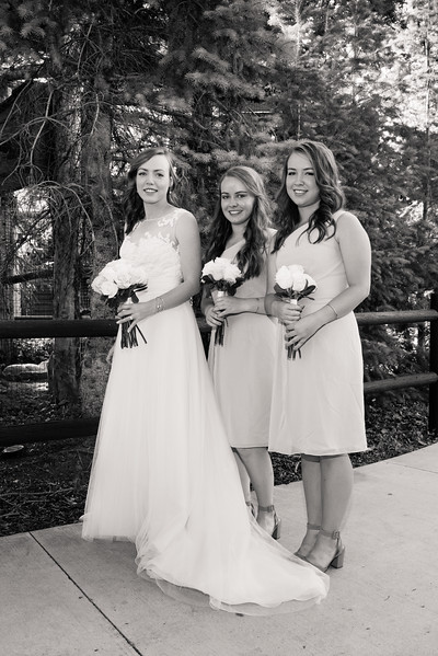 tracy-aviary-wedding-811395