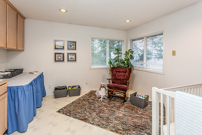 2463 Tipperary Ct-19