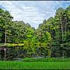 Country Place, Hidden Lake, Lake #4
