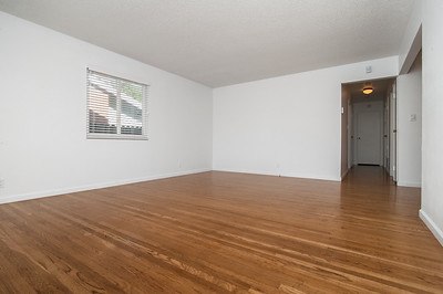 livingroom (1 of 2)