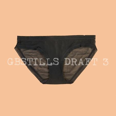 Draft3_17-08-13_gbstills_GBS5104