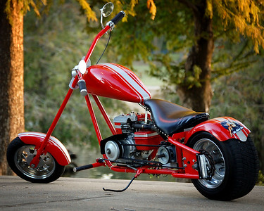 Richard Wilkerson - Mini Chopper