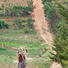 Boys carrying bundles of sticks along a steep dirt road in Kigali Rwanda