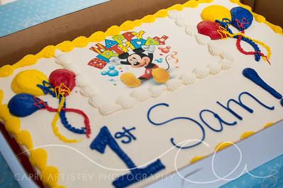 Sam Birthday-1360