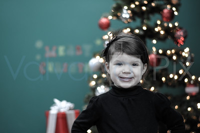 Holiday Portraits-23
