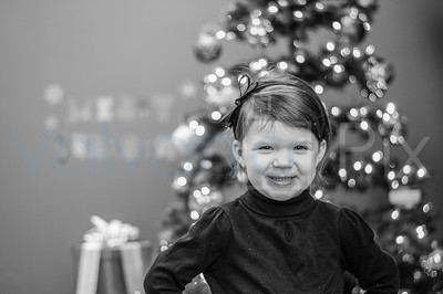 Holiday Portraits-18