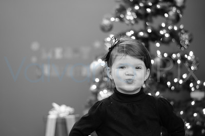 Holiday Portraits-19