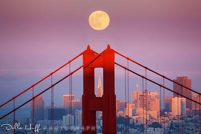 June Rise, Golden Gate Bridge