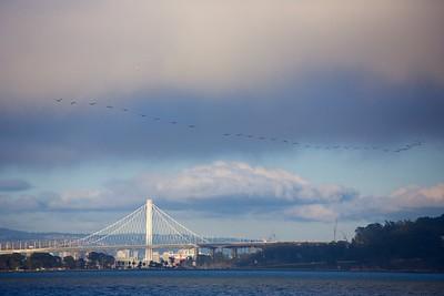 New Bay Bridge Tower 9