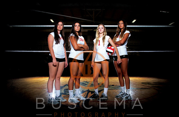 2014 Girl's Volleyball