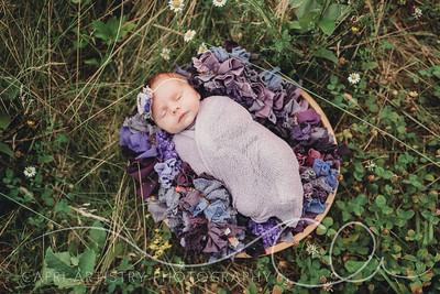 Sarah Newborn-51