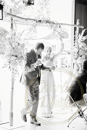 Kaelie and Tom Wedding 08C - 0015bw