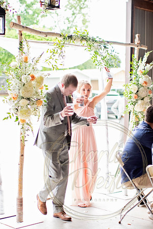 Kaelie and Tom Wedding 08C - 0015
