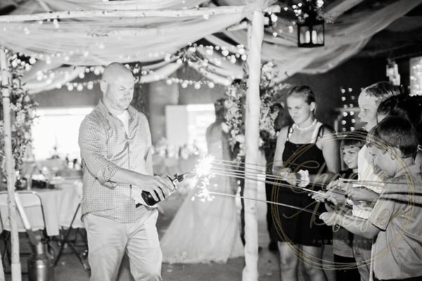 Kaelie and Tom Wedding 08C - 0389bw