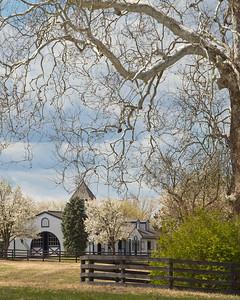 Spring at Shadwell Farm