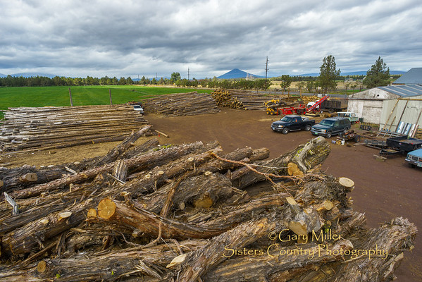 Wood stockpiles run high in preparation for winter demand at the Sisters Forest Products wood yard off of the Redmond Highway 126 seven miles east of Sisters, Oregon on September 23, 2013. Copyright © 2013 Gary N. Miller, Sisters Country Photography