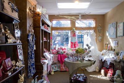 20130215 SmartCPA Dianes Stores-187_WEB