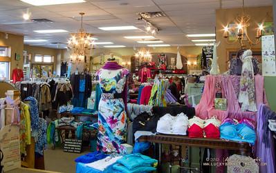 20130215 SmartCPA Dianes Stores-185_WEB