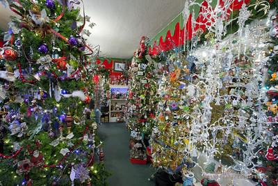 20130215 SmartCPA Dianes Stores-167_WEB