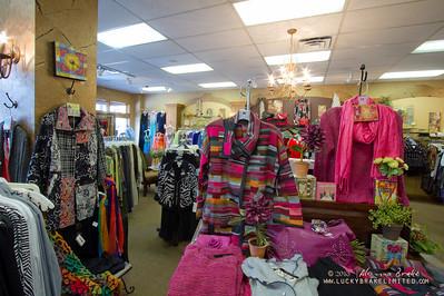 20130215 SmartCPA Dianes Stores-180_WEB